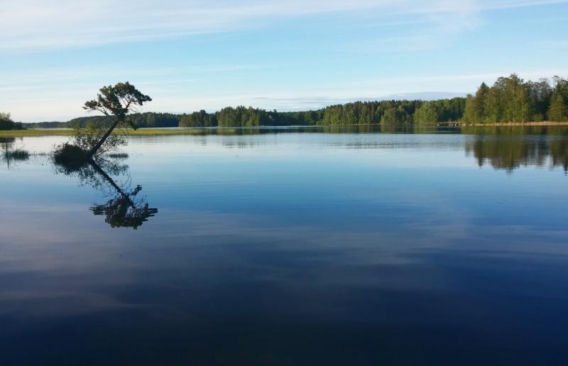 hiljainen järvimaisema luonnossa